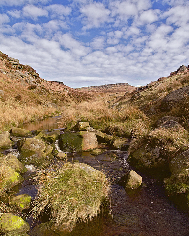 Burbage Brook