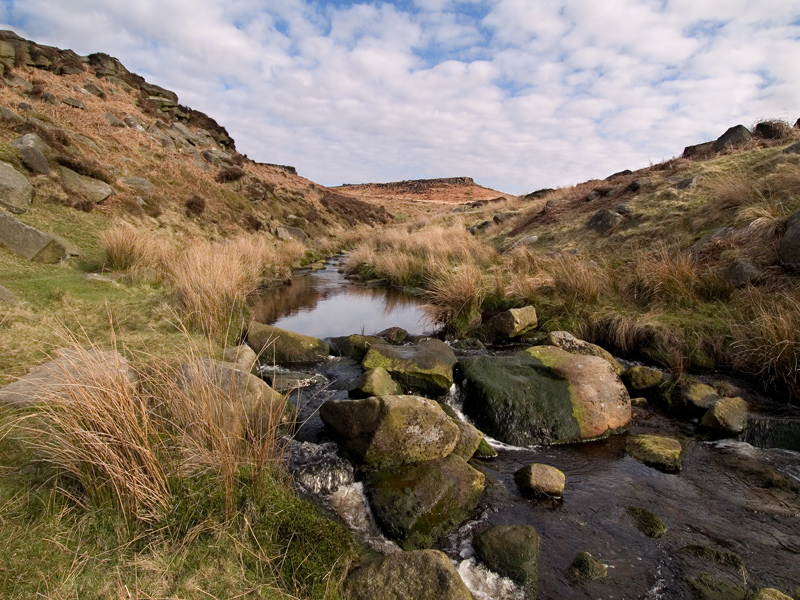 Burbage Brook 2